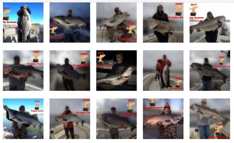 Fishing 24-7 Guide Service - Photo Link