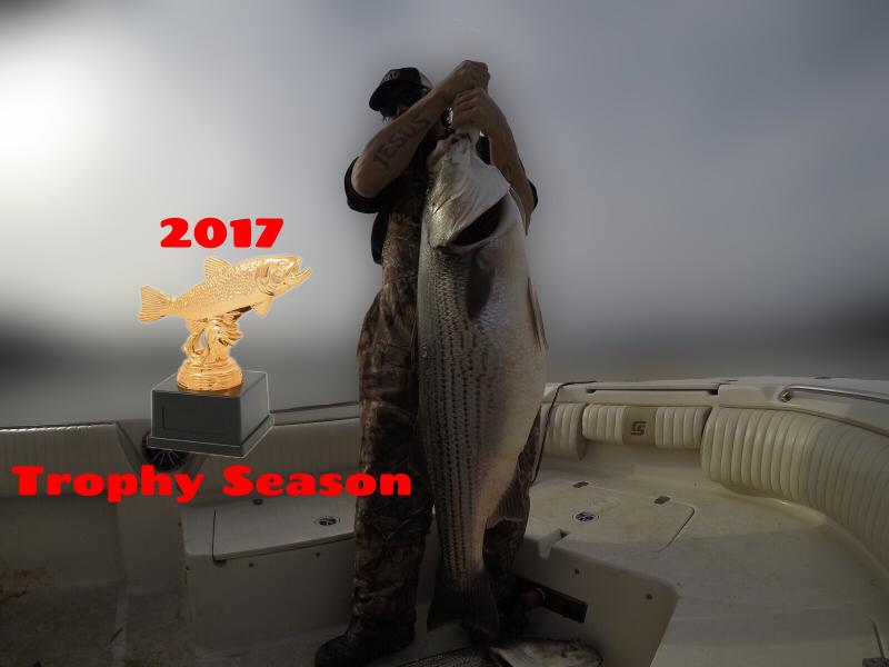 2017 Smith Lake Trophy Striped Bass Trip